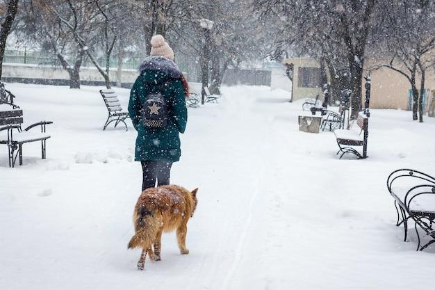 Одинокая девушка гуляет в заснеженном парке рядом с собакой собака следует за девушкой во время снегопада в парке
