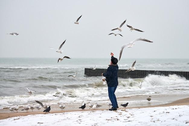 Одинокий старик кормит чаек, чаек и других птиц в море