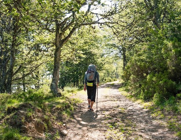Одинокий паломник с рюкзаком, идущий по камино-де-сантьяго в испании, путь святого иакова