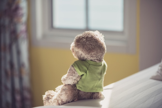 Lonely teddy bear near the window