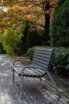 Lonely wooden bench in autumn park under leaves nature
