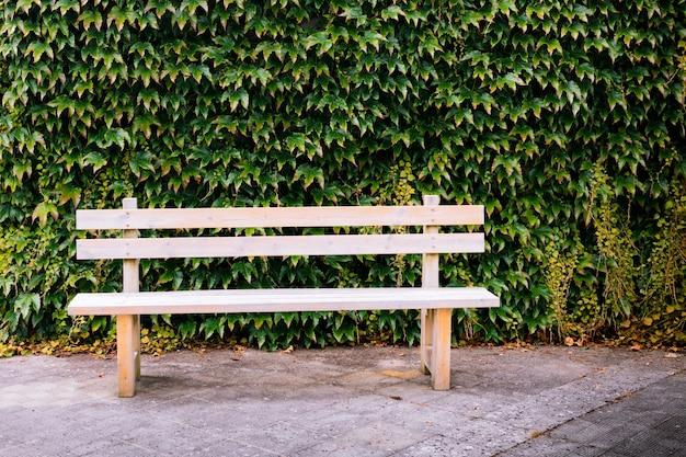 Одинокая деревянная скамейка с вьющимися растениями в качестве фона