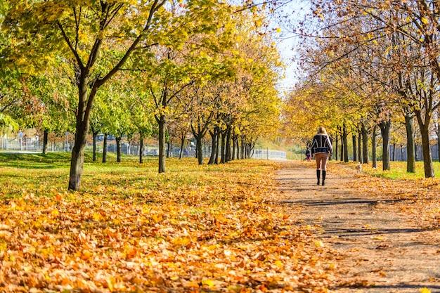 秋の都市公園を歩く孤独な若い女性