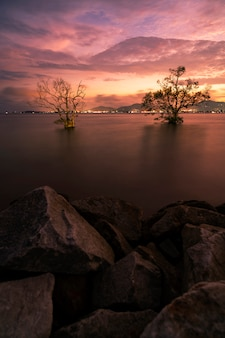 Long exposure image of dramatic sky seascape with rock in sunset scenery landscape nature view