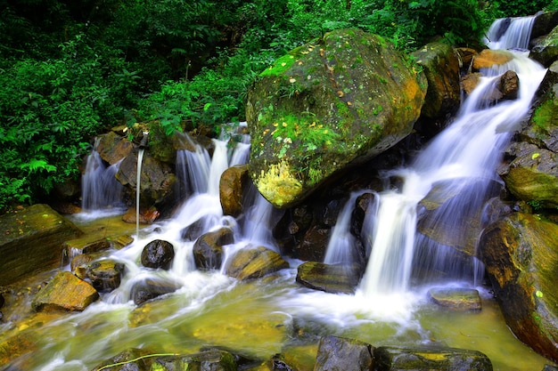 Long exposure photos of a stream at nuwara eliya sri lanka