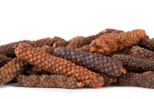 Long pepper or piper longum