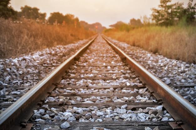 Long railway tracks in a rural scene.