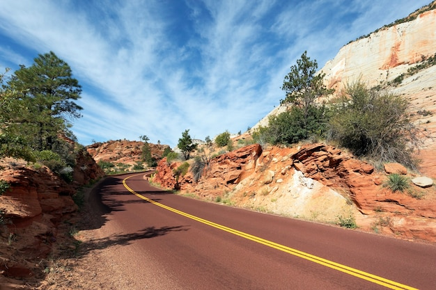 Long road in zion national park in the fall