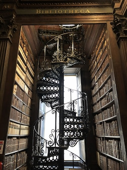 Long room ladder