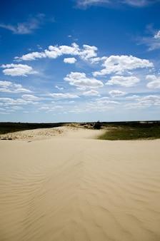 曇った青い空の下でキラリと光る長い砂の小道