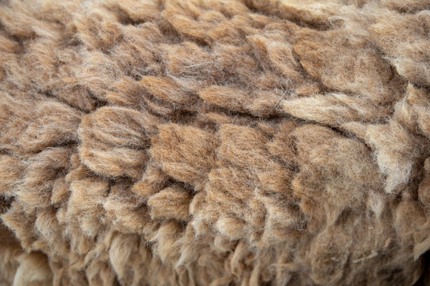 Long sheep wool texture for garment textile
