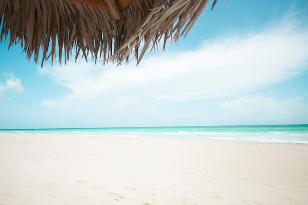 Long shot exotic beach with palm umbrella