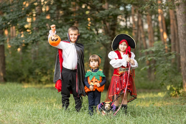 Long shot of kids with halloween costumes Free Photo