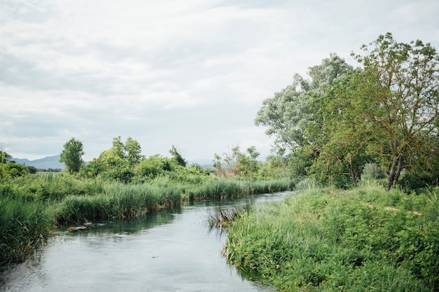 Длинный выстрел реки в сельхозугодья