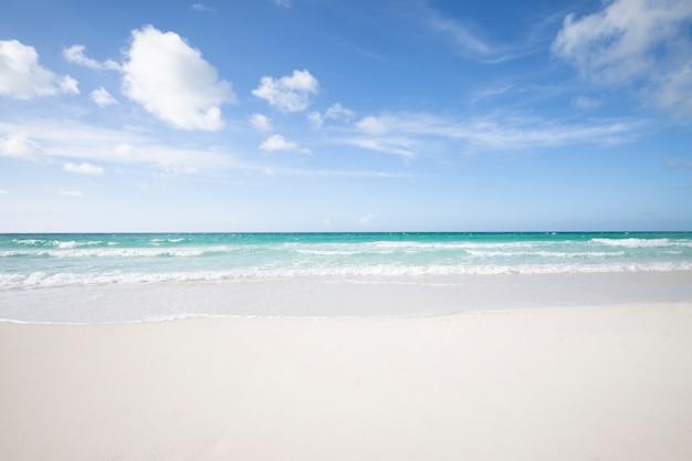 熱帯の砂浜のロングショット
