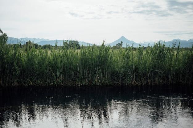 Long shot of river in farmland