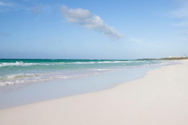 Long shot of tropical sandy beach