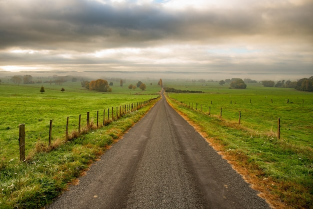 不機嫌そうな曇りの日に丘から下る長くまっすぐな狭い田舎道