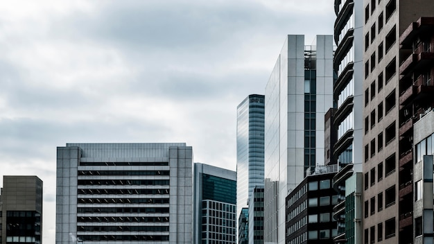 Длинный вид современных небоскребов офисных зданий