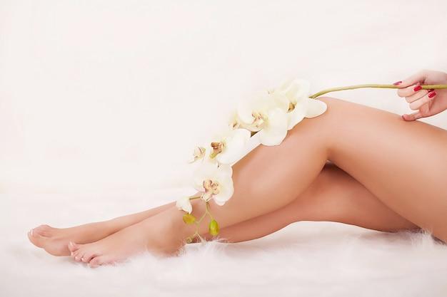 Long woman's legs holding beautiful flowers