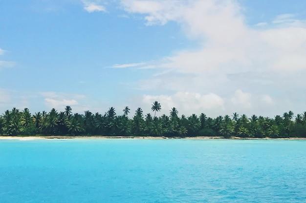 손바닥과 황금빛 해변 전에 청록색 물에서 멀리서 봐
