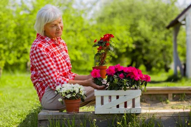 꽃을보고. 화분에 예쁜 꽃을 보면서 기분이 좋은 회색 머리 은퇴 한 여성
