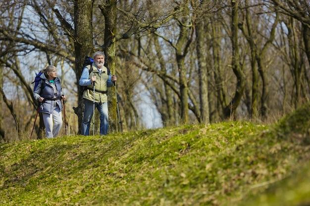 Ищу лучшие эмоции. возрасте семейная пара мужчина и женщина в туристическом снаряжении, идущем на зеленой лужайке рядом с деревьями в солнечный день. концепция туризма, здорового образа жизни, релаксации и единения.