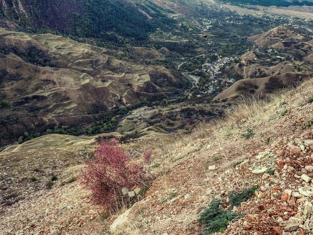 緩い斜面。織り目加工の山々がある高地の緑の高原。乾燥した山の谷。遠くに伸びる岩だらけの棚。