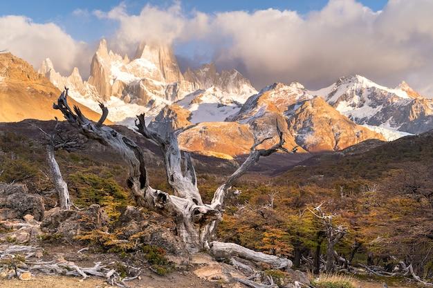 Los glaciares national park, santa cruz province