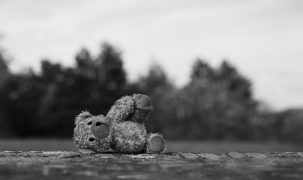 Lost teddy bear with sad face lying on footpath with blurry sky