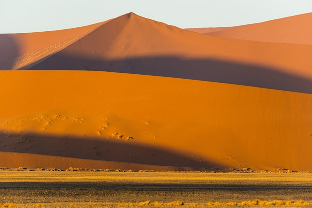 Lot of beautiful sand dunes in the namib desert in namibia