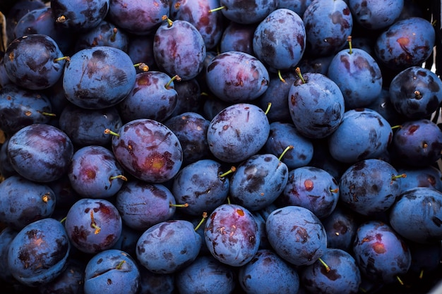 A lot of blue organic plums background