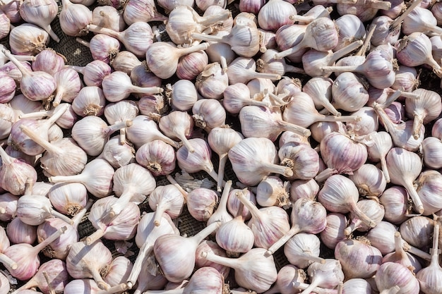 A lot of garlic
