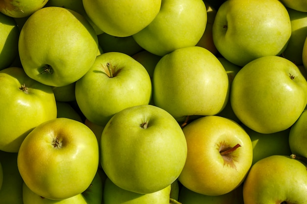 A lot of green apples are the view from the top.