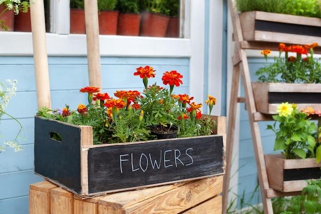 식물이 있는 집의 거리 외부 나무 현관에 있는 나무 상자에 많은 여름 꽃