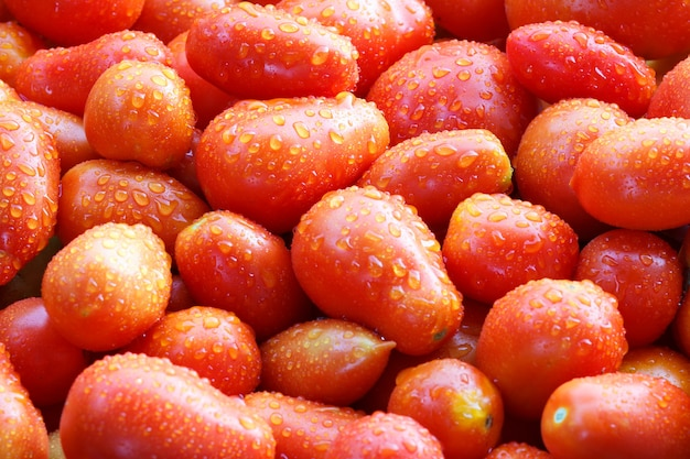 Lot of red ripe tasty tomatoes with water drops