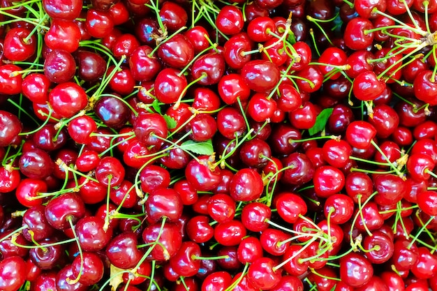 A lot of ripe and sweet cherries on the counter