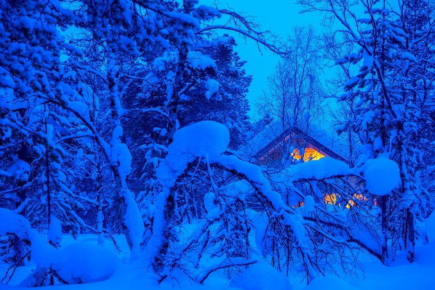 A lot of snow in the evening winter forest. lonely wooden cottage glows in the thicket