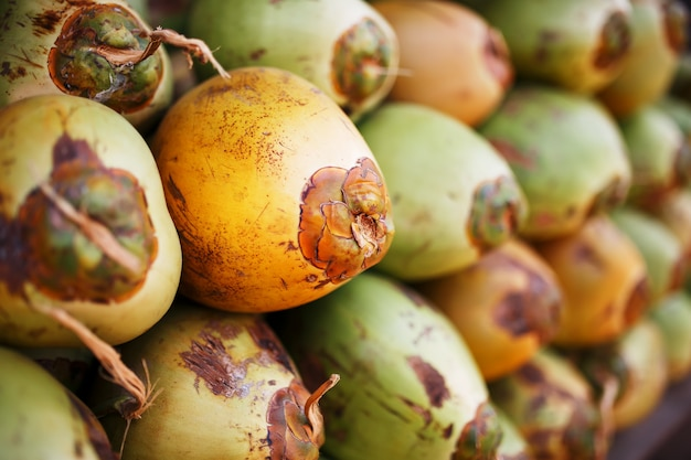 Lots of fresh green coconuts lined with a stack. close-up market stalls