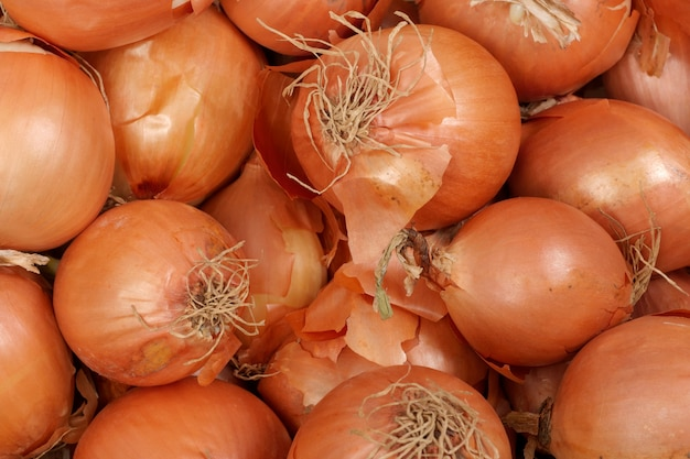 Lots of golden bulb onions in market