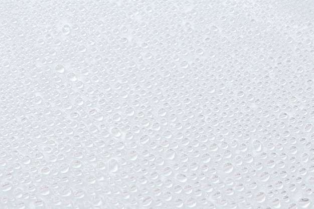 Lots of water drops