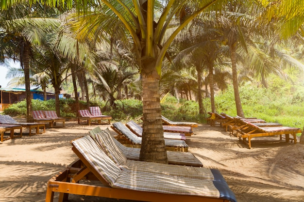 Lots of wooden covered sun chairs under shadow
