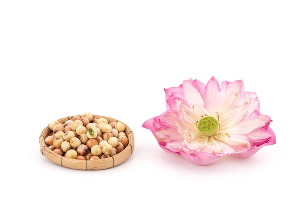 Lotus flower and seeds isolated.