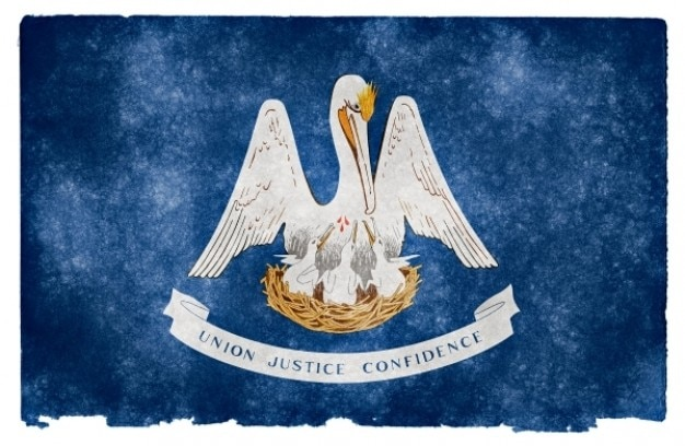 Louisiana grunge flag