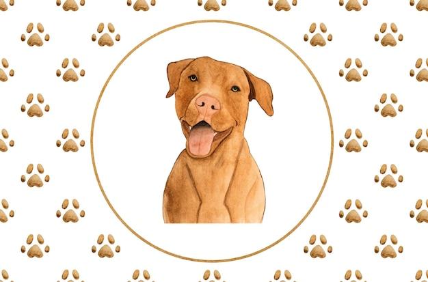 초콜릿 색상의 사랑스럽고 사랑스러운 강아지