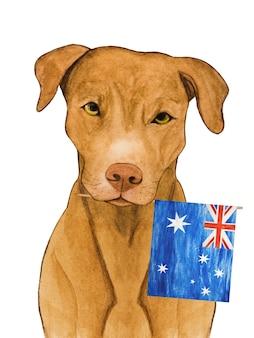 초콜릿 색의 사랑스럽고 예쁜 강아지. 수채화로 아름다운 그림.