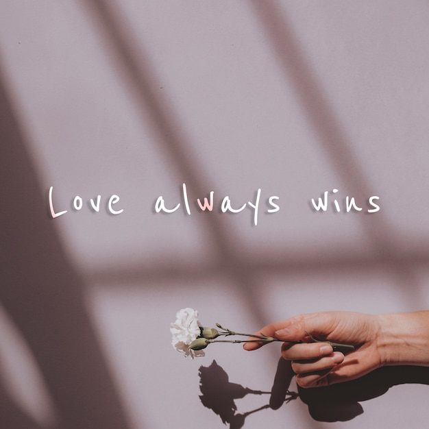 Love always wins quote on a wall and hand holding flower