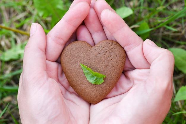 愛とバレンタインデーのコンセプト。緑の芝生フィールドの背景にハートの形の男性の手