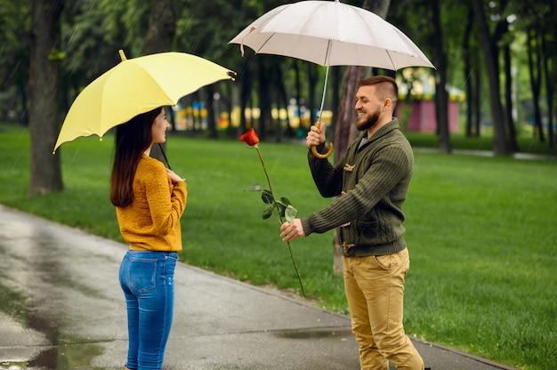 傘を持った愛のカップル、雨の日の公園でのロマンチックなデート。散歩道、路地の雨天で彼の女性を待っている赤いバラの男