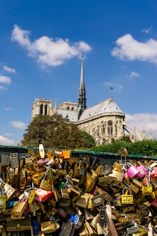 Love padlocks locked on the rail the pont des arts bridge with notre dame cathedral